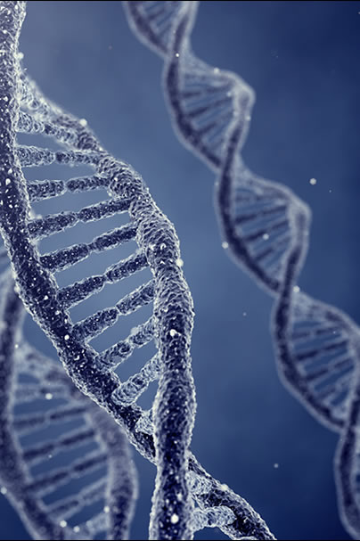 Mind the Risk: Managing genetic risk information